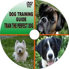 LEARN HOW TO TRAIN YR DOG VIDEO DVD SIMPLE STEP BY STEP DOG TRAINING LESSONS NEW