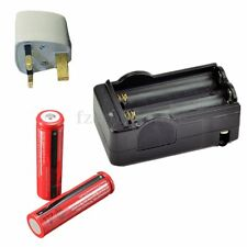 2PCS 3.7V 18650 Li-ion 3000mAh Rechargeable Batteries + Smart Battery Charger