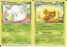 Pokemon Cards: Whimsicott 11/98 & Cottonee 9/98 Emerging Powers Evolution!