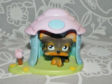 Littlest Pet Shop Yorkie Puppy Dog with House #141 LPS Terrier