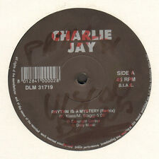 CHARLIE JAY - Rhythm Is A Mystery (Remix) - 1991 DAILY MUSIC - DLM 31719