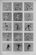 COLLEGE BASEBALL PITCHERS DELIVERING THE BALL YALE HARVARD PRINCETON CORNELL