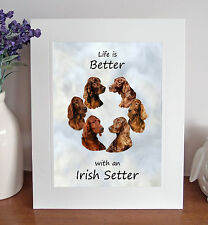 "Irish Setter 'Life is Better' 10"" x 8"" Mounted Print Picture Image Fun Gift"