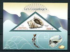 Ivory Coast 2016 MNH Seashells 1v S/S Fish Fishes Shells Marine Stamps