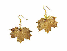 Sugar Maple Real Leaf 24k Gold Plated Earrings, French Wire Dangle Hooks, Medium