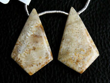 Natural Fossil Coral Smooth Kite Briolette Gemstone Pair Beads (33020)