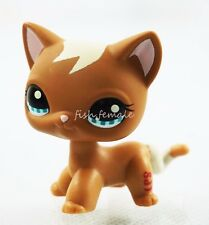 Brown Cat Kitty Lot Blue Eyes Short Hair Hasbro Littlest Pet Shop LPS Toys #1170