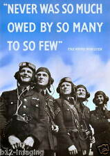 RAF Fighter Command Spitfire WW2  Battle of Britain 75th The Few Poster