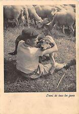 BF38666 l amis de touts le jour   chien dog  animal animaux