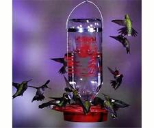 BEST-1 HUMMINGBIRD FEEDER with 32 oz. GLASS BOTTLE, FREE PRIORITY SHIPPING