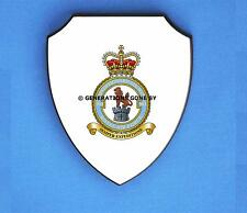 ROYAL AIR FORCE 903 EXPEDITIONARY SUPPORT WING WALL SHIELD (FULL COLOUR)