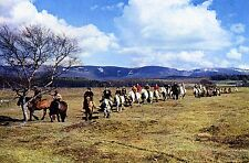 Newtonmore: 'Coming Down from the Cairngorms' : Newtonmore Pony Trekkers