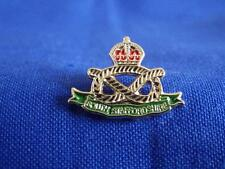 SOUTH STAFFORDSHIRE REGIMENT LAPEL PIN