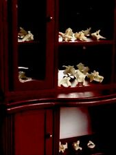 Miniature Mirrorback Cabinet Of Curiosities Real Animal Bones