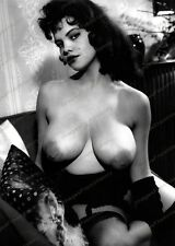 8x10 Print Sexy Model Pin Up Rosina Revelle 1960's Nudes #9027987