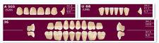 1 Full set 28*1 Dental Acrylic Teeth VITA Color 503 A1 Denture New On SALE