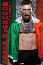 Connor McGregor 24x36 poster UFC Mixed Martial Arts MMA Ireland Tae Kwon Do