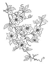 "Clear stamp (2.5""x3"") Big Flowers on a Vine FLONZ vintage acrylic rubber stamps"