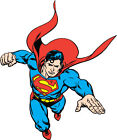 DC STYLE GUIDE PLATE - SUPERMAN FLYING E