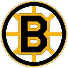 "Boston Bruins NHL Hockey Car Bumper Window Locker Notebook Sticker Decal 4.5""X4"""