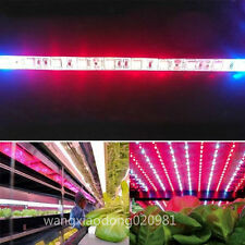 Plant Growing Light 5M 5050 300LED Strip Hydroponic RED BLUE 4:1 Waterproof 12V