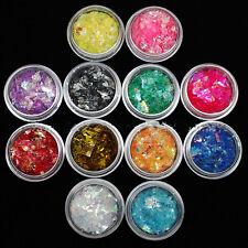 12 Colors Nail Art Iced Mylar Glitter Powder Acrylic UV Gel Tips Decoration