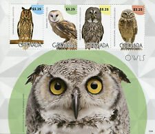 Grenada 2015 MNH Owls 4v M/S Birds of Prey Burrowing Long Eared Barn Owl Stamps