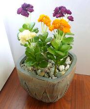 6 Desert Rose Flower Mini Plastic Plants Lifelike Artificial Fork Grass