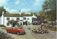 MG MGA  Bedford Bus Malham Yorkshire Sheperd with Sheep Motoring greeting card