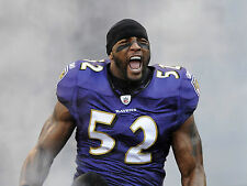 AWESOME RAY LEWIS RAVENS COMES THRU FOG IN PRE GAME  photo 8 x10