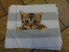 Cute pussy cat ginger black white grey stripes craft fabric remnant 22x20cm