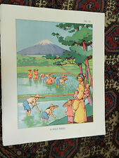 Vintage Schools Poster - A Rice Field -   1930s / 1940s