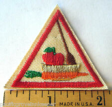 Girl Scout 1986-98 Brownie FOOD FUN TRY-IT Badge Patch Make Eat It Apple Carrot