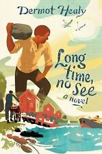 Long Time, No See by Dermot Healy (2012, Hardcover)