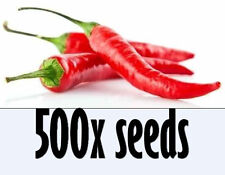 500 HOT CHILLI LONG SLIM RED CAYENNE PEPPER ORGANIC Seeds GARDEN Vegetables