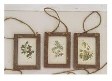 FRAMED BOTANICAL PRINTS~ HOLLY & FIR~ CHRISTMAS ORNAMENTS~S/3