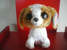Ty Beanie Boo Cookie the dog 6 inch NWMT. Retired. SOLID EYES. Purple hang tag.