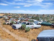 Ford Salvage yard as far as the eyes can see  8 x 10 Photograph