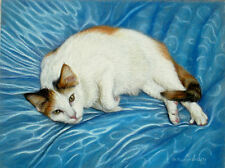 Original Pastel Drawing Cute Calico Cat on Blue Pillow Sally Porter Wildlife Art