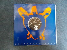 "Natural Born Grooves Universal Love 12"" Natural Born Grooves 1995"