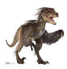#1038 Dinosaurier Velociraptor Größe 157cmx155cm Pappaufsteller Aufsteller Figur