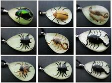 21 PCS Insect Pendant Mix Real Scorpion spider beetle Glow in Dark NG