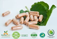 Graviola Fruit Powder Pure Herb Capsules 200 x 500mg