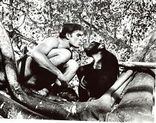 Mike Henry Tarzan Shirtless 8x10 photo T2178