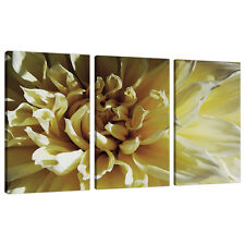 Lot de 3 crème floral toile imprimé photos Salon Mur Art 3104