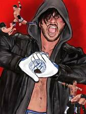 AJ Styles: The Missing Matches - 2-Disc DVD