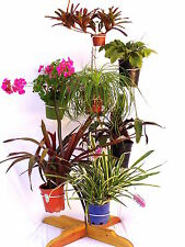 Redwood Plant Stand Space saver Bromeliad Orchid Foliage Flower Grow Vertical