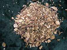 Angelica root herb Wicca/Pagan/Spell Supplies/Herbs/Incense witchcraft