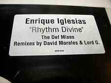 "Enrique Iglesias Rhythm Divine 12"" Single NM Interscope 1999 INT8P-6749"