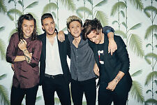 Poster A3 One Direction Harry Styles Liam Payne Niall Horan Louis Tomli 04